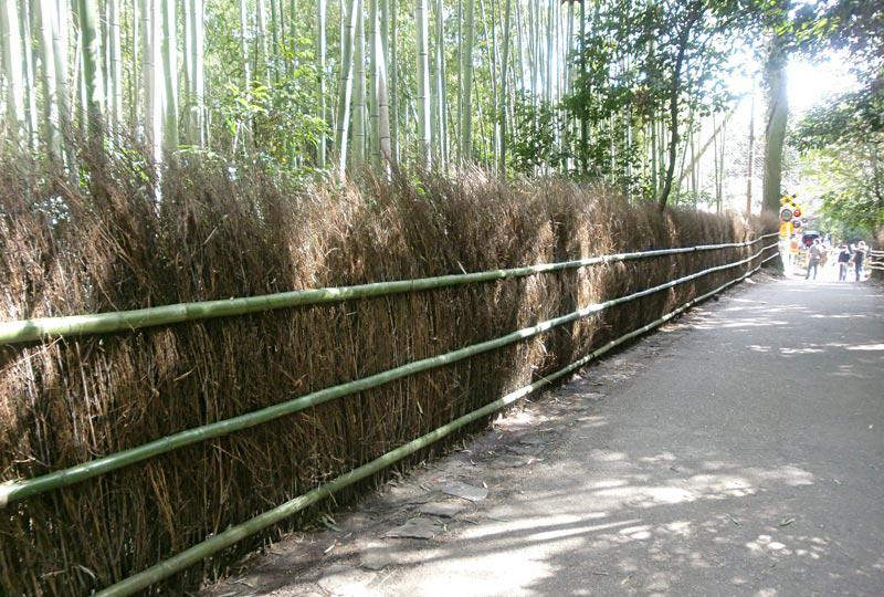 京都 小倉山特別保存地区