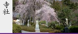 京都の造園設計・施工会社 | 紫峰園